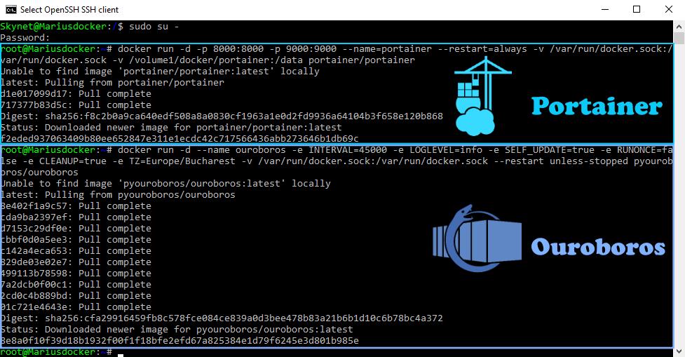 Ouroboros ssh synology docker setup