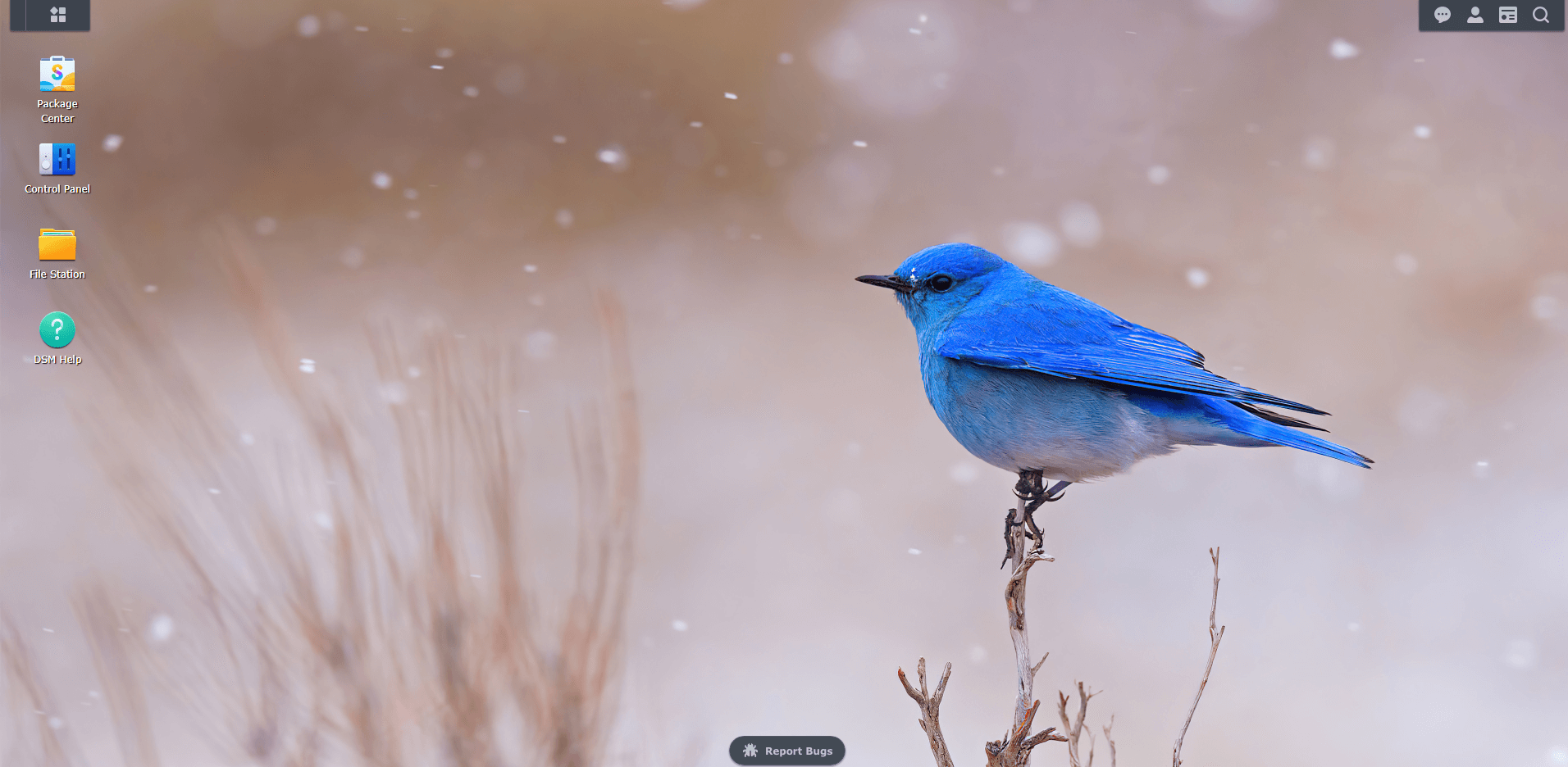 Bluebird wallpaper Synology DSM 7