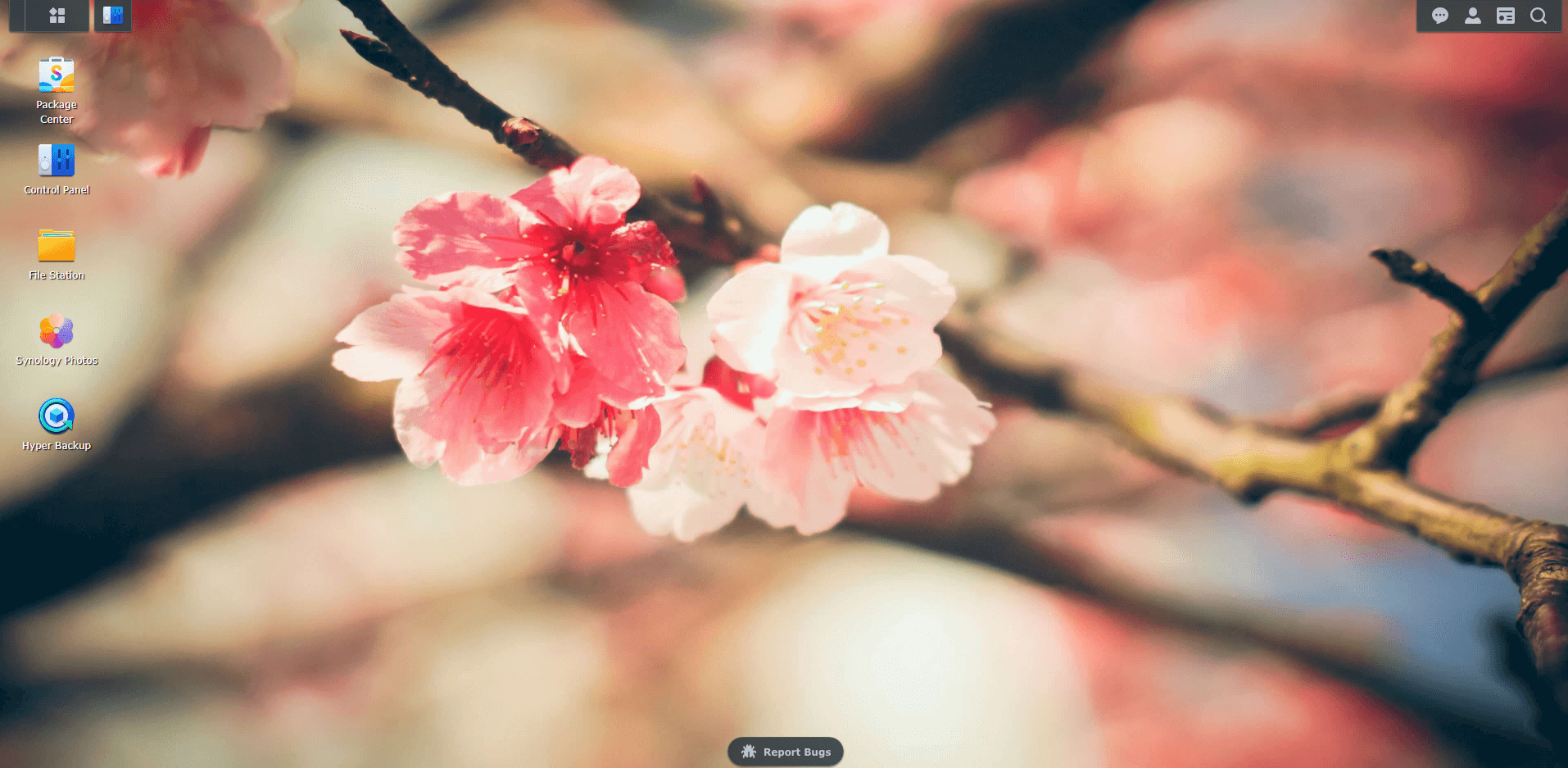 6 Synology Spring Wallpapers